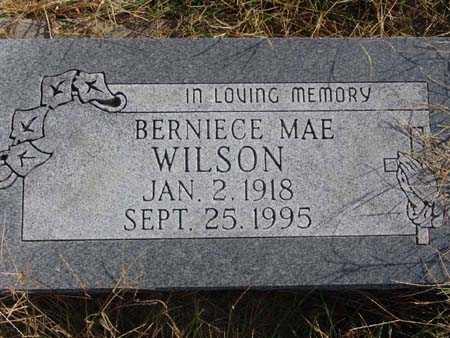 WILSON, BERNIECE MAE - Warren County, Iowa | BERNIECE MAE WILSON