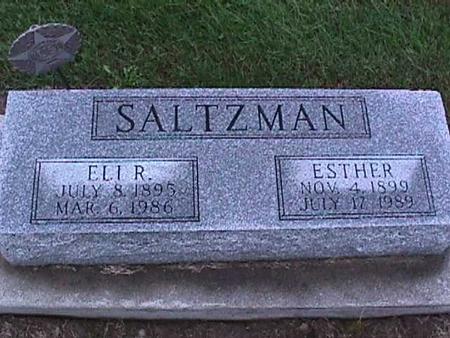 SALTZMAN, ELI - Washington County, Iowa | ELI SALTZMAN