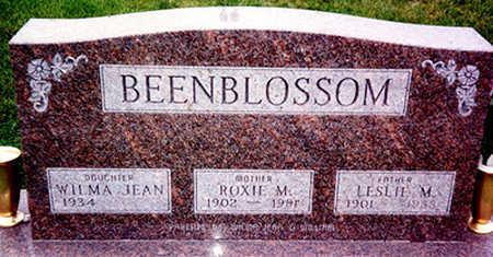 BEENBLOSSOM, LESLIE MORTIMER - Washington County, Iowa   LESLIE MORTIMER BEENBLOSSOM