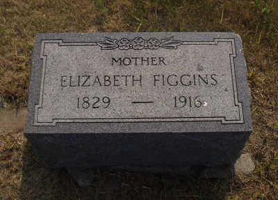 FIGGINS, ELIZABETH - Washington County, Iowa | ELIZABETH FIGGINS