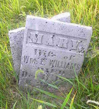 WILLIAMS, MARY - Washington County, Iowa   MARY WILLIAMS