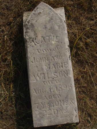 WILSON, KATIE - Washington County, Iowa | KATIE WILSON