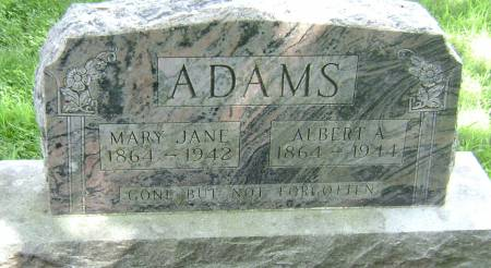 ADAMS, ALBERT A - Wayne County, Iowa | ALBERT A ADAMS