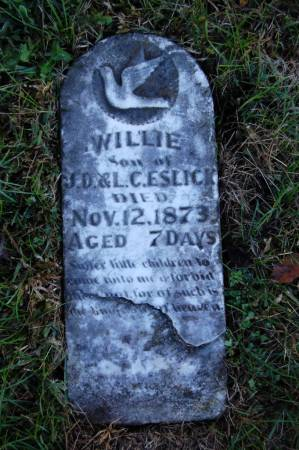 ESLICK, WILLIE - Webster County, Iowa   WILLIE ESLICK