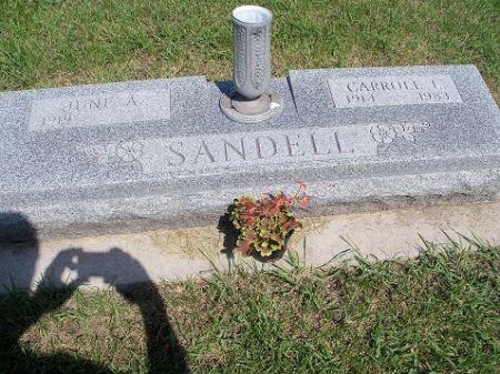 SANDELL, CARROLL - Webster County, Iowa | CARROLL SANDELL