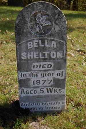 SHELTON, BELLA - Webster County, Iowa | BELLA SHELTON