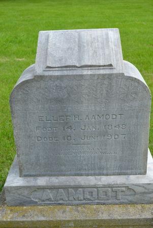 AAMODT, ELLF HANSEN - Winnebago County, Iowa | ELLF HANSEN AAMODT