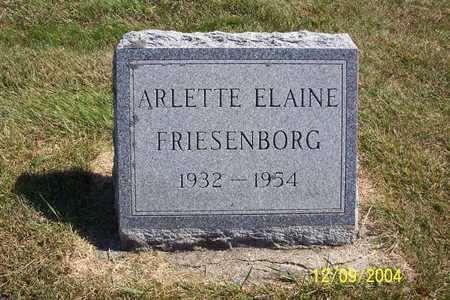FRIESENBORG, ARLETTE ELAINE - Winnebago County, Iowa | ARLETTE ELAINE FRIESENBORG