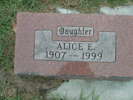SKOGEN, ALICE ELIZABETH - Winnebago County, Iowa   ALICE ELIZABETH SKOGEN