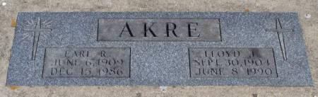AKRE, EARL G - Winneshiek County, Iowa   EARL G AKRE