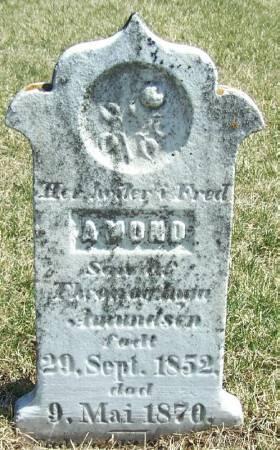 AMUNDSON, AMOND - Winneshiek County, Iowa | AMOND AMUNDSON
