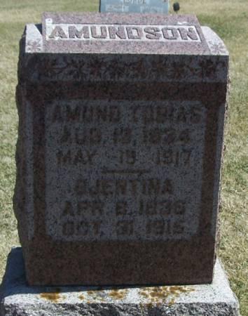 AMUNDSON, GJERTINA - Winneshiek County, Iowa   GJERTINA AMUNDSON