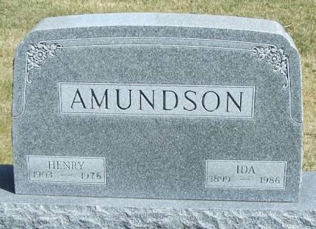 AMUNDSON, HENRY - Winneshiek County, Iowa | HENRY AMUNDSON