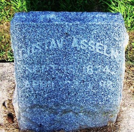 ASSELN, GUSTAV - Winneshiek County, Iowa | GUSTAV ASSELN
