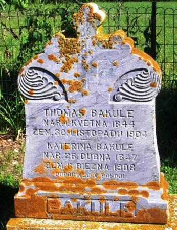 BAKULE, THOMAS - Winneshiek County, Iowa   THOMAS BAKULE