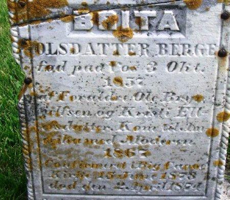BERGE, BRITA OLSDATTER - Winneshiek County, Iowa | BRITA OLSDATTER BERGE