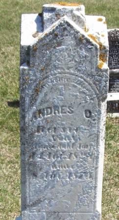BERSIE, ANDRES O - Winneshiek County, Iowa   ANDRES O BERSIE
