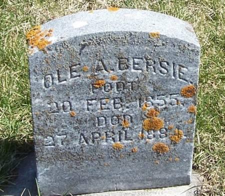 BERSIE, OLE A - Winneshiek County, Iowa   OLE A BERSIE
