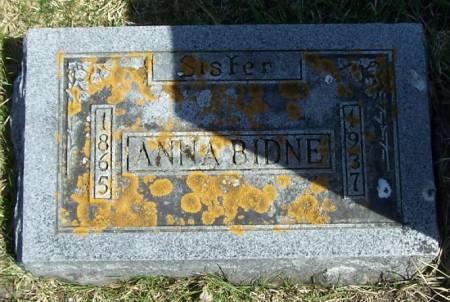 BIDNE, ANNA - Winneshiek County, Iowa | ANNA BIDNE