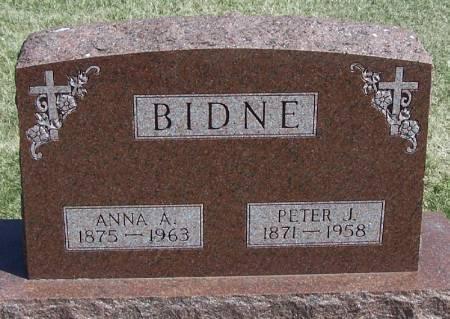 BIDNE, PETER J - Winneshiek County, Iowa | PETER J BIDNE