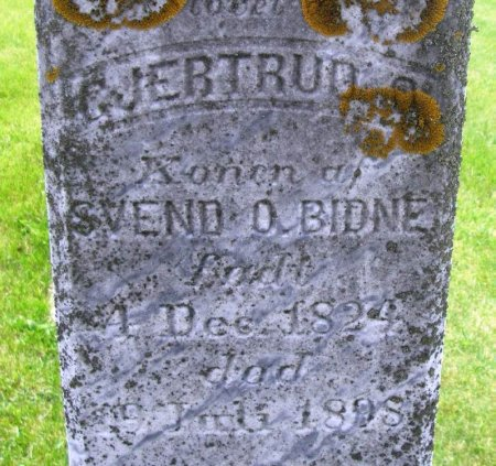 BIDNE, GJERTRUD O. - Winneshiek County, Iowa   GJERTRUD O. BIDNE
