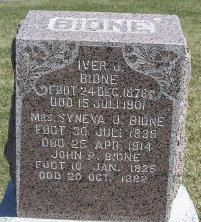 BIDNE, SYNEVA JONSDTR - Winneshiek County, Iowa | SYNEVA JONSDTR BIDNE