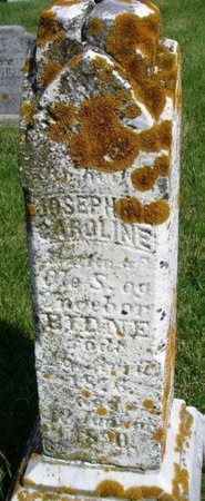 BIDNE, JOSEPHINE CAROLINE - Winneshiek County, Iowa | JOSEPHINE CAROLINE BIDNE