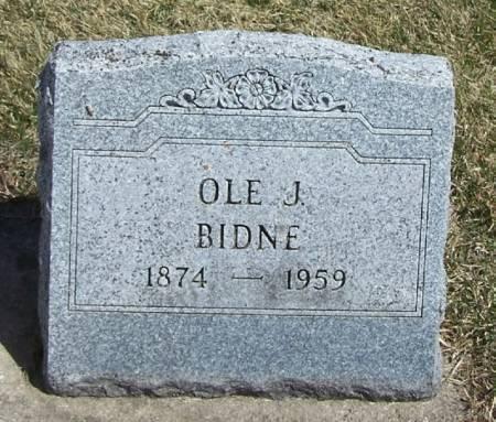 BIDNE, OLE J - Winneshiek County, Iowa | OLE J BIDNE