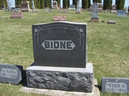 BIDNE, PEDER FAMILY STONE - Winneshiek County, Iowa   PEDER FAMILY STONE BIDNE
