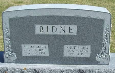 BIDNE, KNUT ELMER - Winneshiek County, Iowa | KNUT ELMER BIDNE