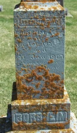 BORSHEIM, MAGNUS O. - Winneshiek County, Iowa   MAGNUS O. BORSHEIM