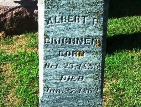 BRICKNER, ALBERT P. - Winneshiek County, Iowa | ALBERT P. BRICKNER