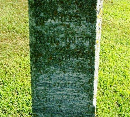 BRICKNER, CHARLES W. - Winneshiek County, Iowa | CHARLES W. BRICKNER