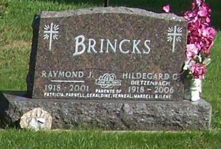 BRINCKS, RAYMOND J - Winneshiek County, Iowa | RAYMOND J BRINCKS
