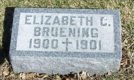 BRUENING, ELIZABETH C - Winneshiek County, Iowa | ELIZABETH C BRUENING