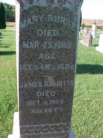 RABBITTS, JAMES - Winneshiek County, Iowa | JAMES RABBITTS