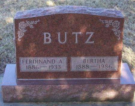 BUTZ, FERDINAND - Winneshiek County, Iowa | FERDINAND BUTZ