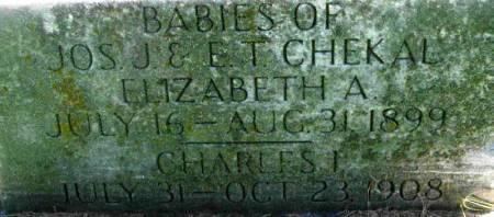 CHEKAL, ELIZABETH A. - Winneshiek County, Iowa | ELIZABETH A. CHEKAL