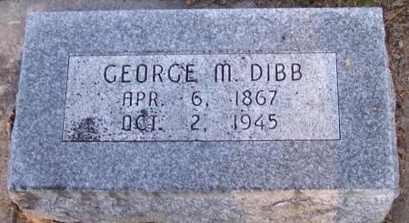 DIBB, GEORGE M - Winneshiek County, Iowa | GEORGE M DIBB