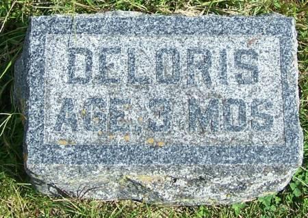 DUBEK, DELORIS - Winneshiek County, Iowa   DELORIS DUBEK