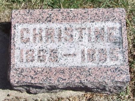 ELLINGSON, CHRISTINE - Winneshiek County, Iowa | CHRISTINE ELLINGSON