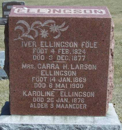 ELLINGSON, KAROLINE - Winneshiek County, Iowa | KAROLINE ELLINGSON
