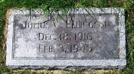 ELLINGSON, JULIUS C. - Winneshiek County, Iowa   JULIUS C. ELLINGSON