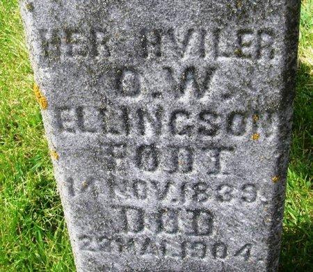 ELLINGSON, OLE W - Winneshiek County, Iowa   OLE W ELLINGSON