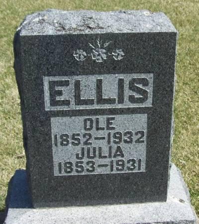 ELLIS, JULIA - Winneshiek County, Iowa   JULIA ELLIS