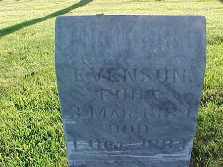 EVENSON, THEODOR O. - Winneshiek County, Iowa | THEODOR O. EVENSON