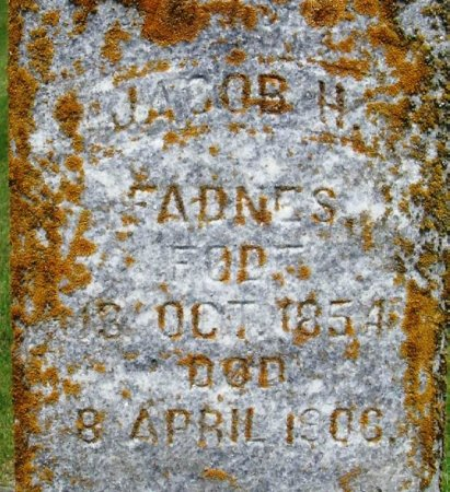 FADNES, JACOB H - Winneshiek County, Iowa | JACOB H FADNES