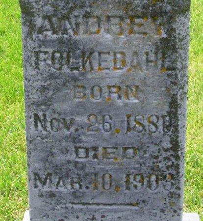 FOLKEDAHL, ANDREW NILSON - Winneshiek County, Iowa | ANDREW NILSON FOLKEDAHL