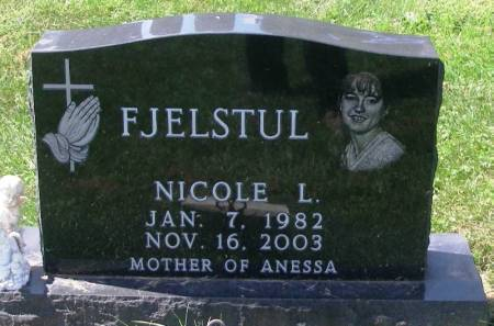 FJELSTUL, NICOLE L. - Winneshiek County, Iowa   NICOLE L. FJELSTUL