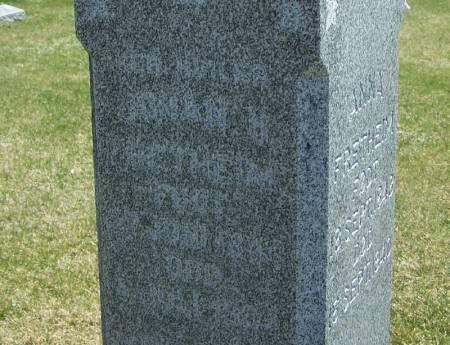 FRETHEIM, JOHAN H - Winneshiek County, Iowa | JOHAN H FRETHEIM